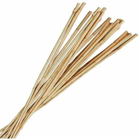 Tuteur bambou 1m80 (Lot de 10) - Naturel