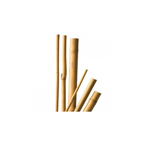 Tuteurs x 5 bambou naturel - 120 cm / Ø10-12 mm - CIS