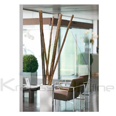 Tutor de bambú clásico decorativo