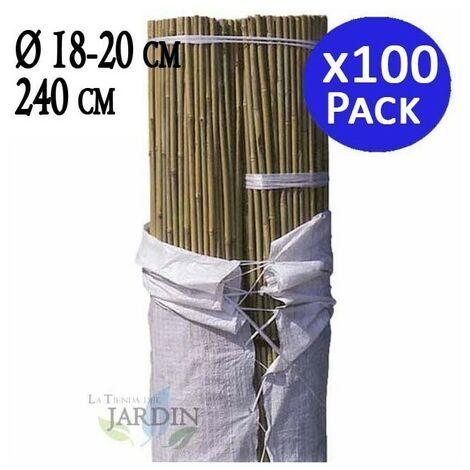 Tutor de Bambú natural 240 cm, 18-22 mm diámetro. 100 unidades