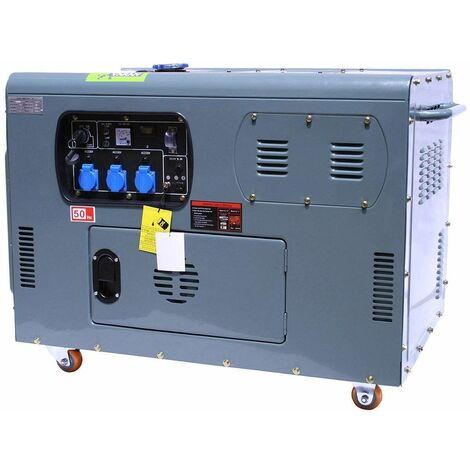 Varan Motors - 92692 Generador eléctrico / grupo electrogeno 12KW 230V + 12V