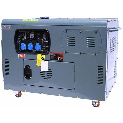 Varan Motors - 92692 Generador eléctrico / grupo electrogeno 12KW 230V + 12V - Gris