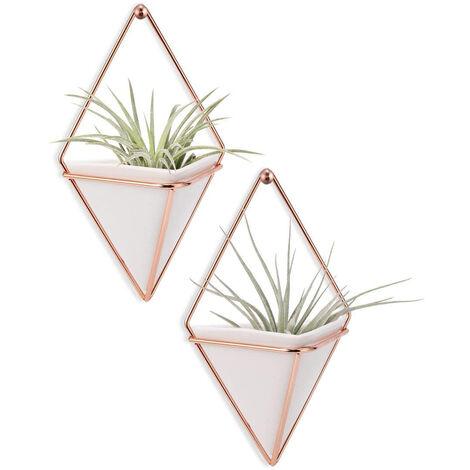 Vase suspendu, pots de plantes aériennes, décoration murale suspendue, support de plante, plante suspendue pour plantes aériennes / plantes succulentes / plantes de cactus / plantes de bureau / plante artificielle -2 Pack