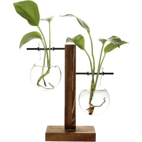 Vases hydroponiques vintage, vase transparent, cadre en bois et verre pour plantes de table, décoration pour bonsaï, B - Vase à 2 ampoules., 11.5 x 19.5cm