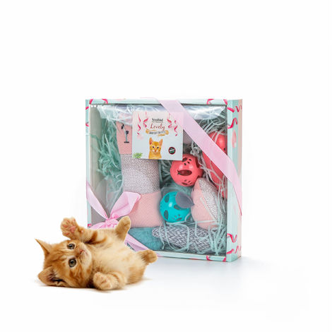 Vealind Interactive Toy for Cats Cat Toys Collection in Beautiful Gift Box