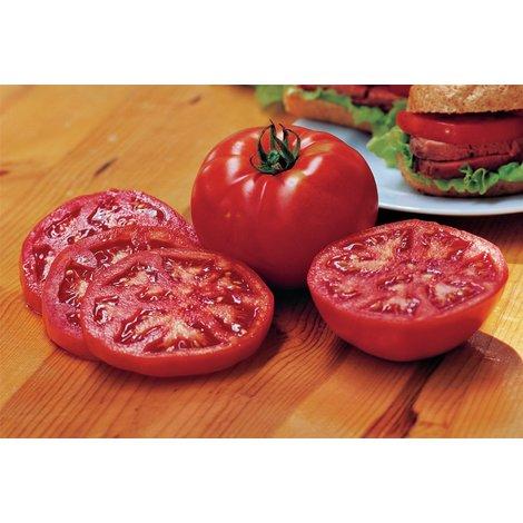 Vegetable - Tomato - Steak Sandwich
