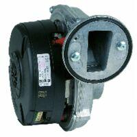 Ventilateur ECOCONCEPT - FERROLI : 39828060