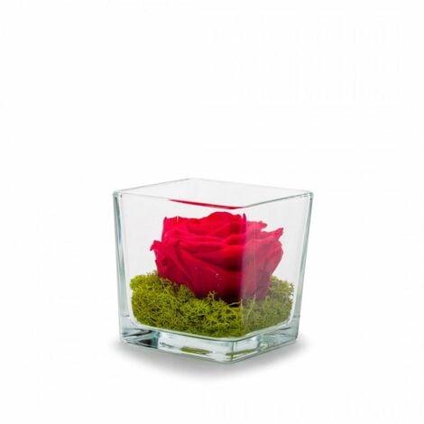 "main image of ""Verrine Genova 10 cm rose stabilisée"""