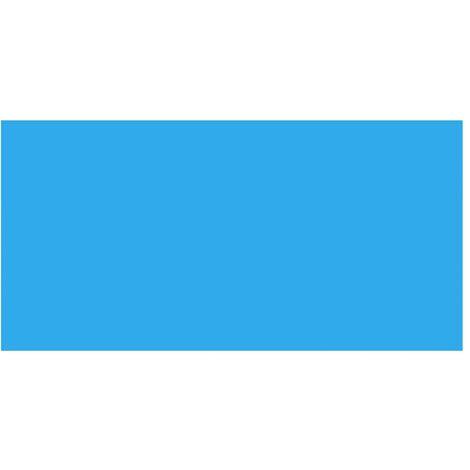 vidaXL Pool Cover Blue 400x200 cm PE - Blue