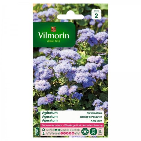 Vilmorin - Ageratum Roi des Bleus