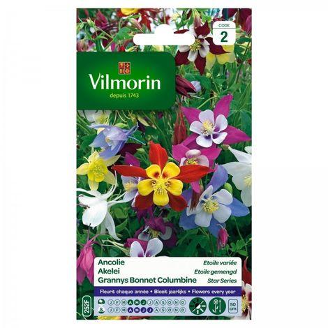 Vilmorin - Ancolie Etoil Mix