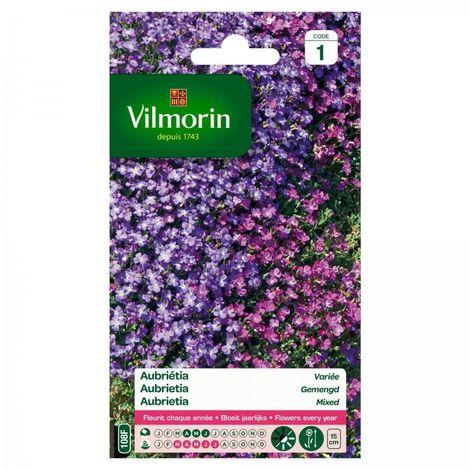 Vilmorin - Aubrietia Mix