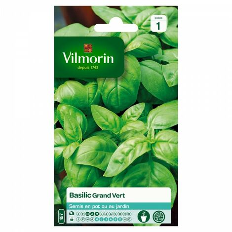 """main image of """"Vilmorin - Basilic Grand Vert"""""""