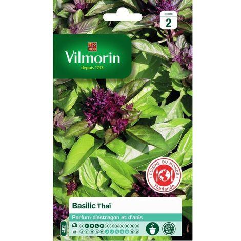 Vilmorin - Basilic Thai Vl 2 463