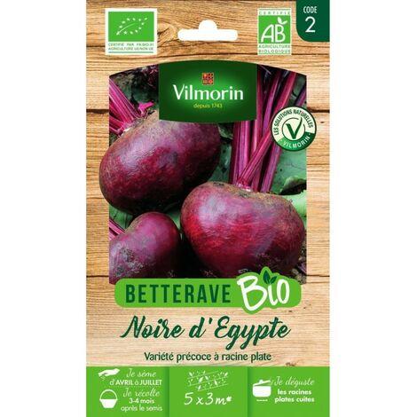 Vilmorin - Betterave Noire d Egypte Bio