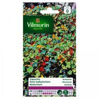 Vilmorin - Capucine Grimpante Multicolore