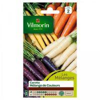 Vilmorin - Carotte Mélange de couleurs
