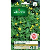 Vilmorin - Cresson de Para