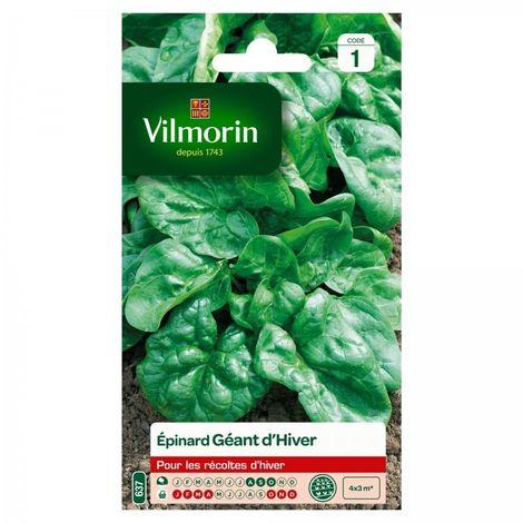 Vilmorin - Epinard Géant d'hiver