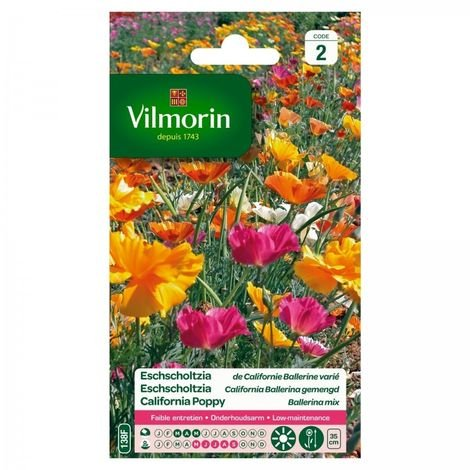 Vilmorin - Eschscholtzia Californie Ballerine