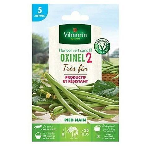 Vilmorin - Graines de Haricot Nain Vert Oxinel 2-5 metres