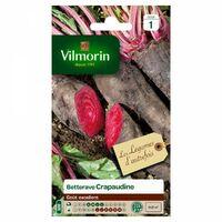 Vilmorin - Jardin - Betterave Rouge Crapudine Serie 1