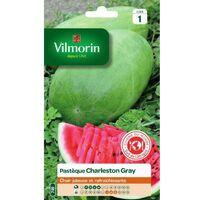 Vilmorin - Pastèque Charleston Gray