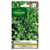 Vilmorin - Pissenlit à Coeur Plein Amélioré