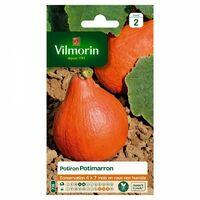 Vilmorin - Potiron Potimarron