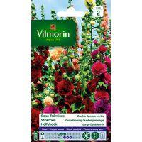 Vilmorin - Rose Trèmière Double Grande Variée