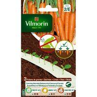 Vilmorin - Ruban de graines Saison de Carottes HF1 (presto, nanco, maestro)