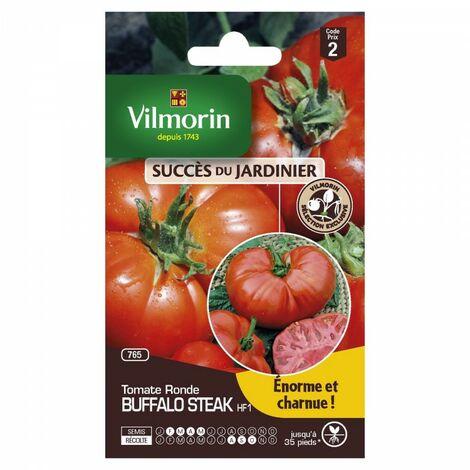Vilmorin - Tomate Buffalo Steak HF1