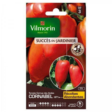 Vilmorin - Tomate Cornabel HF1