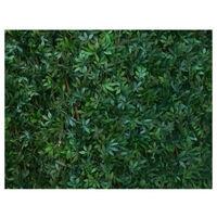 Vine leaf lattice JET7GARDEN 1,00x2,00m - green
