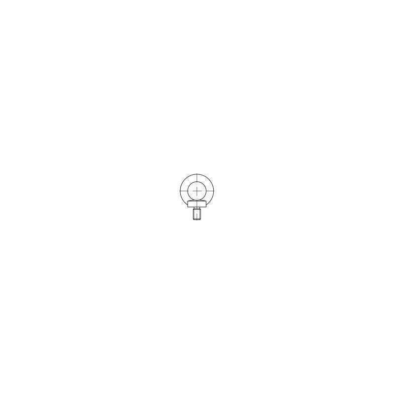 Vis à œillet TOOLCRAFT 1061334 1 pc(s) M10 acier inoxydable N/A V892211