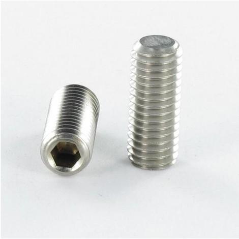 VIS METAUX SANS TETE SIX PANS CREUX (STHC) INOX A4 CLE DE 2 BOUT PLAT 4X8 (Unitaire)