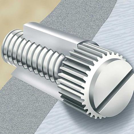 Vis nylon à tête moletée Rond moleté, M4/10mm, Nylon Brut