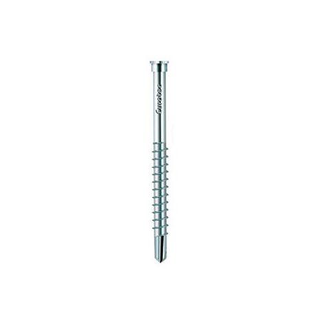 Vis terrasse acier inoxydable trempé 5,5x61mm (Par 200)