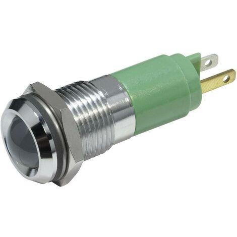 Voyant de signalisation LED CML 19220351 vert 24 V/DC 56 mA 1 pc(s)