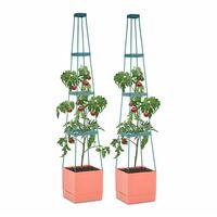 Waldbeck Tomato Tower Set 2 Macetas para tomate 25x150x25cm Tutor PP