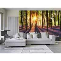 Wall Mural Wake up in the Woods