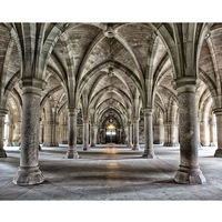 Wall Rogues Gothic Arches Wall Mural