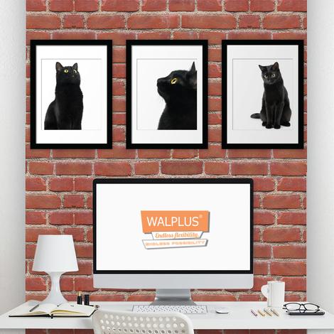 Walplus Black Cat poster set No. 1