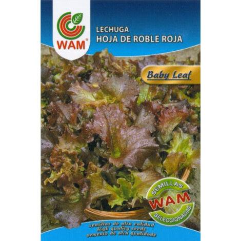 WAM Semillas de LECHUGA HOJA ROBLE ROJA (Baby Leaf), 6 gr