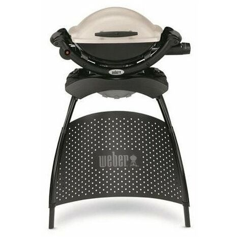 WEBER Barbecue gaz Q 1000 Stand Gas Grill