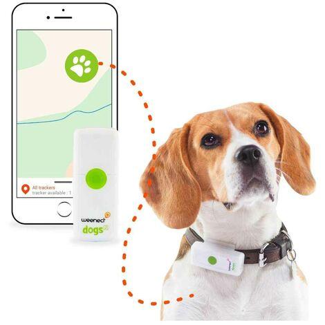 Weenect - Collier GPS Connecté Dogs² pour Chien
