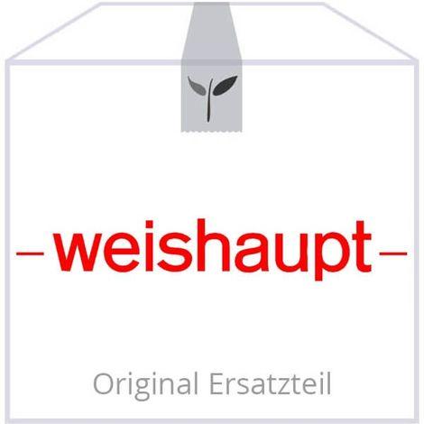 Weishaupt Doppelnippel R1A x G1A x 46 mit Gewindedichtmittel Precote 15 48140130197