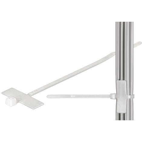 Wentronic Attache de c/âble 12 mm Blanc 100 pi/èces