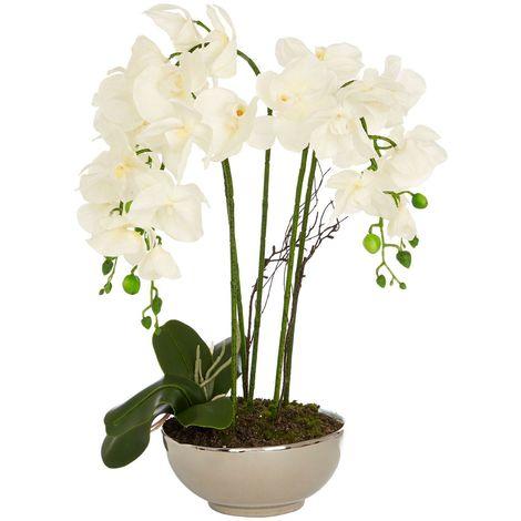 White Orchid Plant, Silver / Natural Ceramic Pot, Fiori