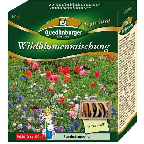 Wildblumenmischung ohne Gräser